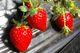 【月家いちごフェア開催】地元農家さんから頂いた苺をふんだんに使ったいちごドルチェが食べ放題